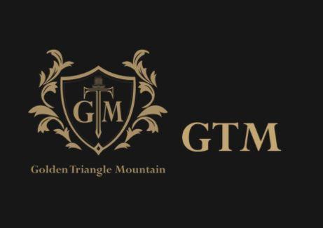 GTM image