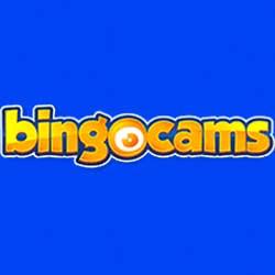 Bingocams image