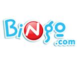 Bingo Casino image