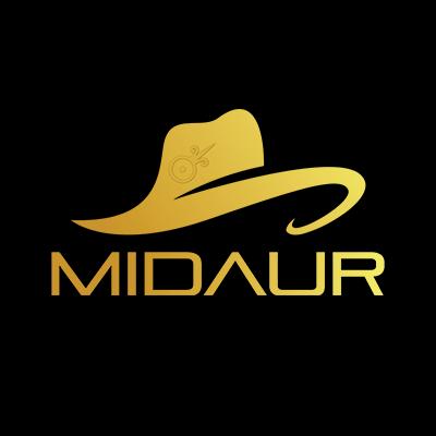 Midaur image
