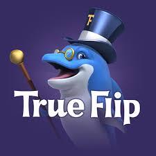 True Flip image