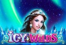Icy Wilds image