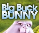 Big Buck Bunny image