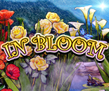 In Bloom image