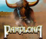 Pamplona image