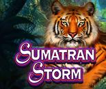 Sumatran Storm image