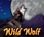 Wild Wolf image