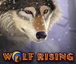 Wolf Rising image