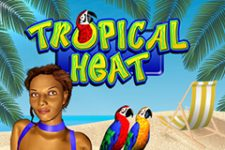 Tropical Heat image