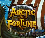 Arctic Fortune image