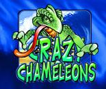 Crazy Chameleons image