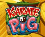 Karate Pig image
