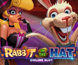 Rabbit In The Hat image