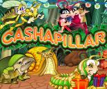 Cashapillar image