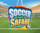 Soccer Safari image