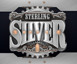 Sterling Silver 3D image