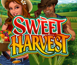 Sweet Harvest image