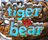 Tiger Vs Bear image