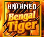 Untamed Bengal Tiger image