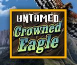 Untamed Crowned Eagle image