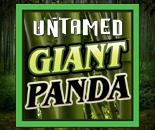 Untamed Giant Panda image