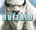 White Buffalo image