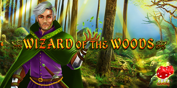 Wizard Of The Woods image