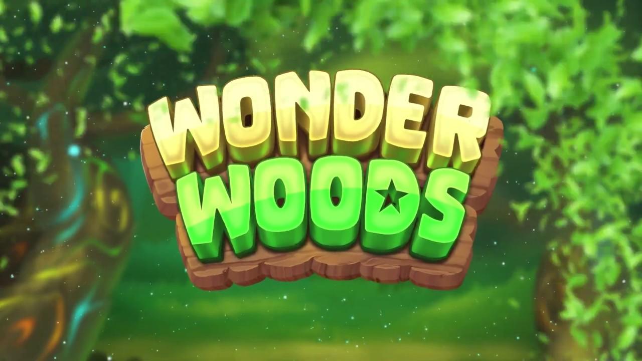 Wonder Woods image