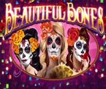 Beautiful Bones image