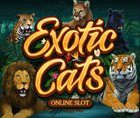 Exotic Cats image