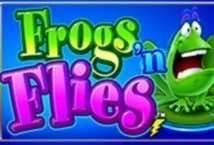 Frogs n Flies image