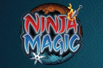 Ninja Magic image