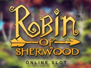 Robin Of Sherwood image
