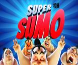 Super Sumo image