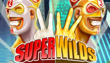 Super Wilds image