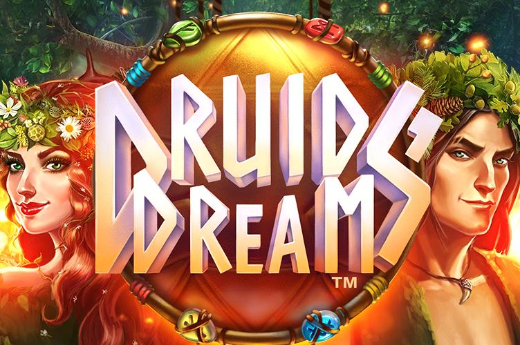 Druids Dream image