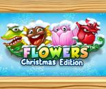 Flowers Christmas Edition image