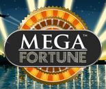 Mega Fortune image