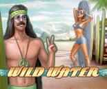Wild Water image