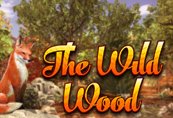 The Wild Wood image