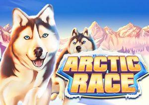 Arctic Race image
