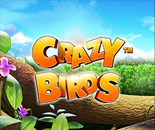 Crazy Birds image