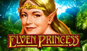 Elven Princess image