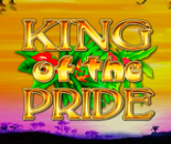 King Of The Pride image
