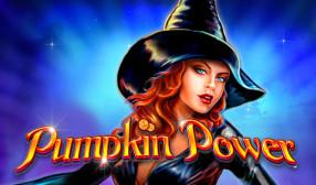 Pumpkin Power image