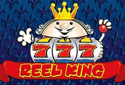 Reel King image