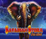 Savannah Storm image