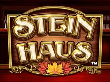 Stein Haus image
