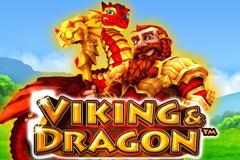 Viking And Dragon image