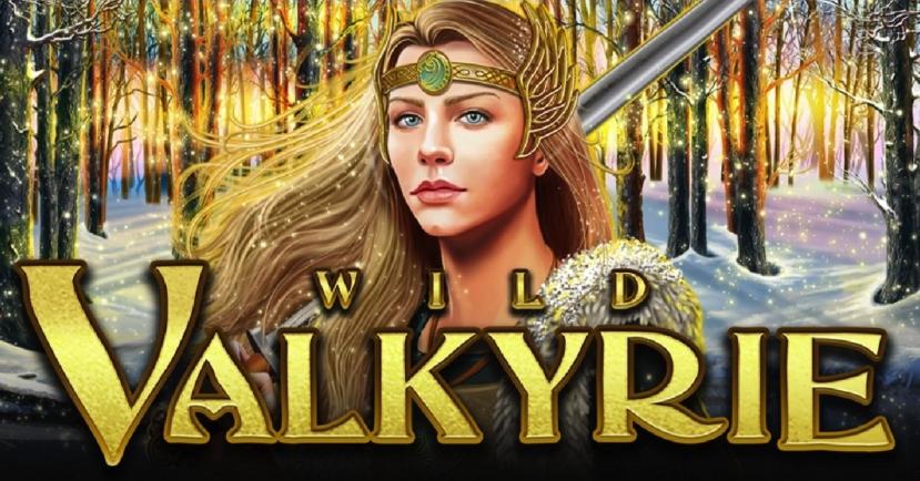 Wild Valkyrie image